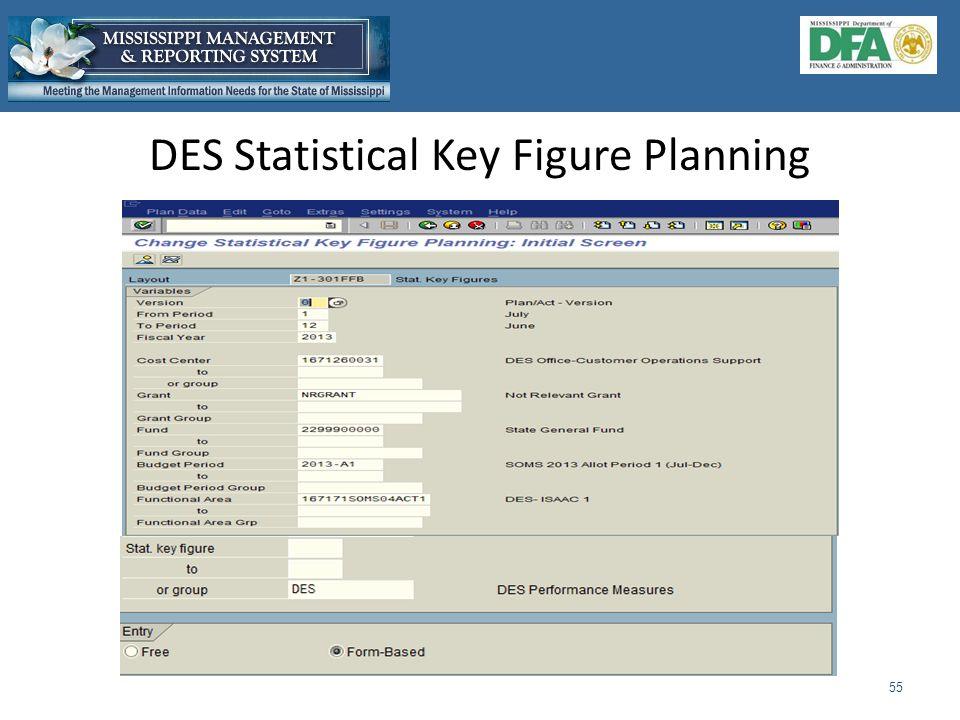 DES Statistical Key Figure Planning 55
