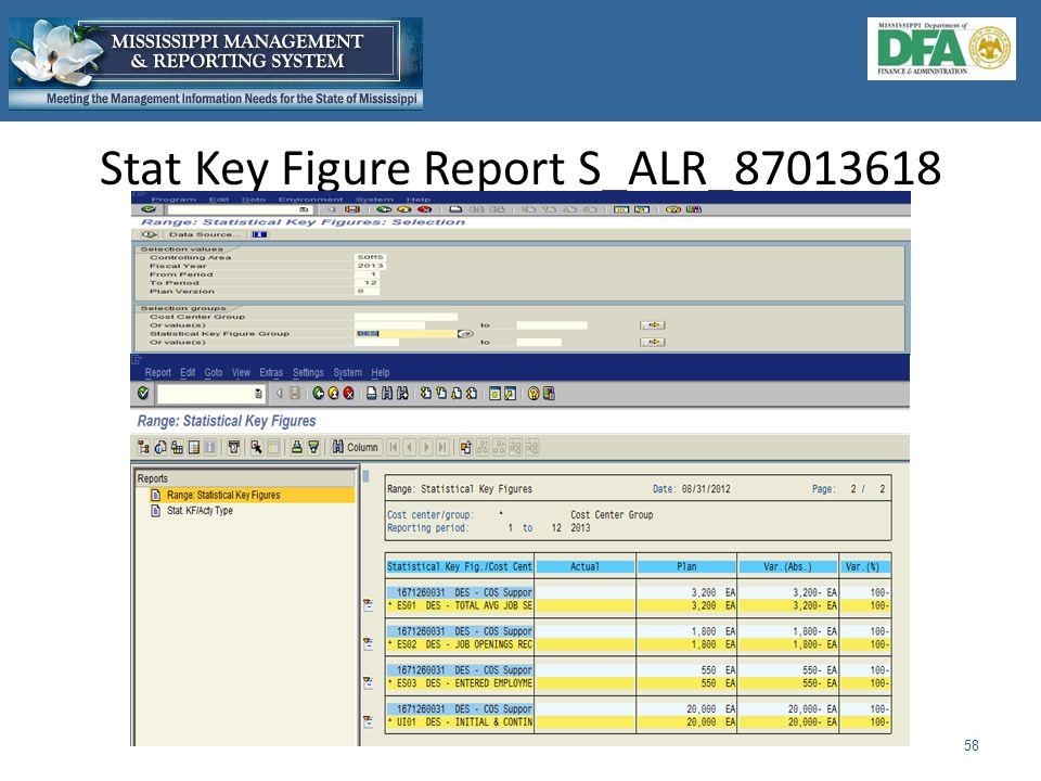 Stat Key Figure Report S_ALR_87013618 58