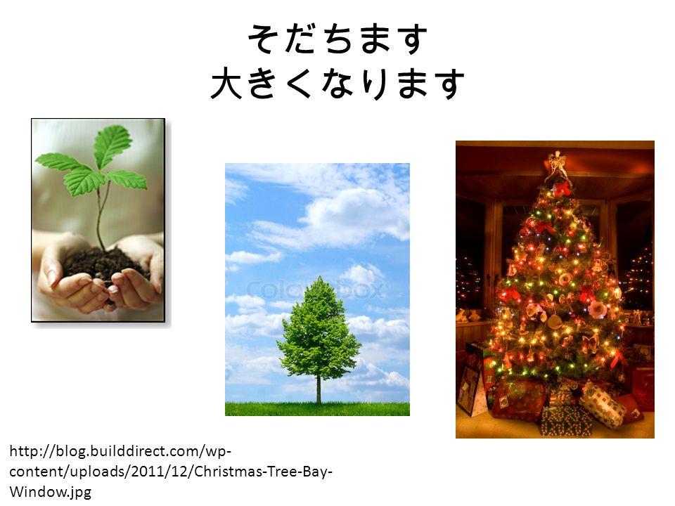 そだちます 大きくなります http://blog.builddirect.com/wp- content/uploads/2011/12/Christmas-Tree-Bay- Window.jpg
