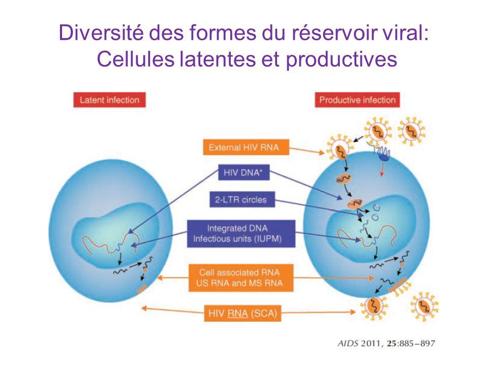 Diversité des formes du réservoir viral: Cellules latentes et productives
