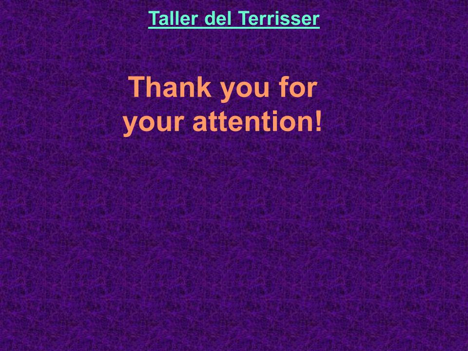 Thank you for your attention! Taller del Terrisser
