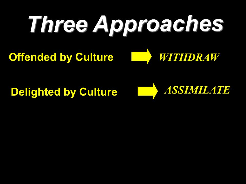 Three Approaches Delighted by Culture WITHDRAW Offended by Culture ASSIMILATE