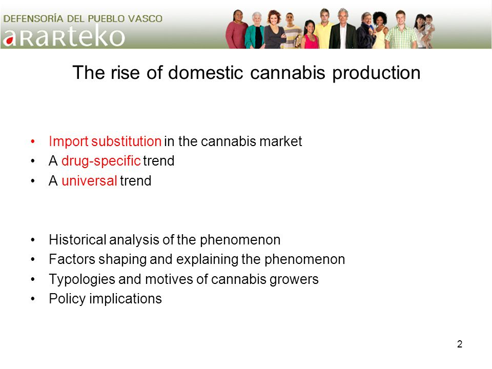 2 The rise of domestic cannabis production Import substitution in the cannabis market A drug-specific trend A universal trend Historical analysis of t