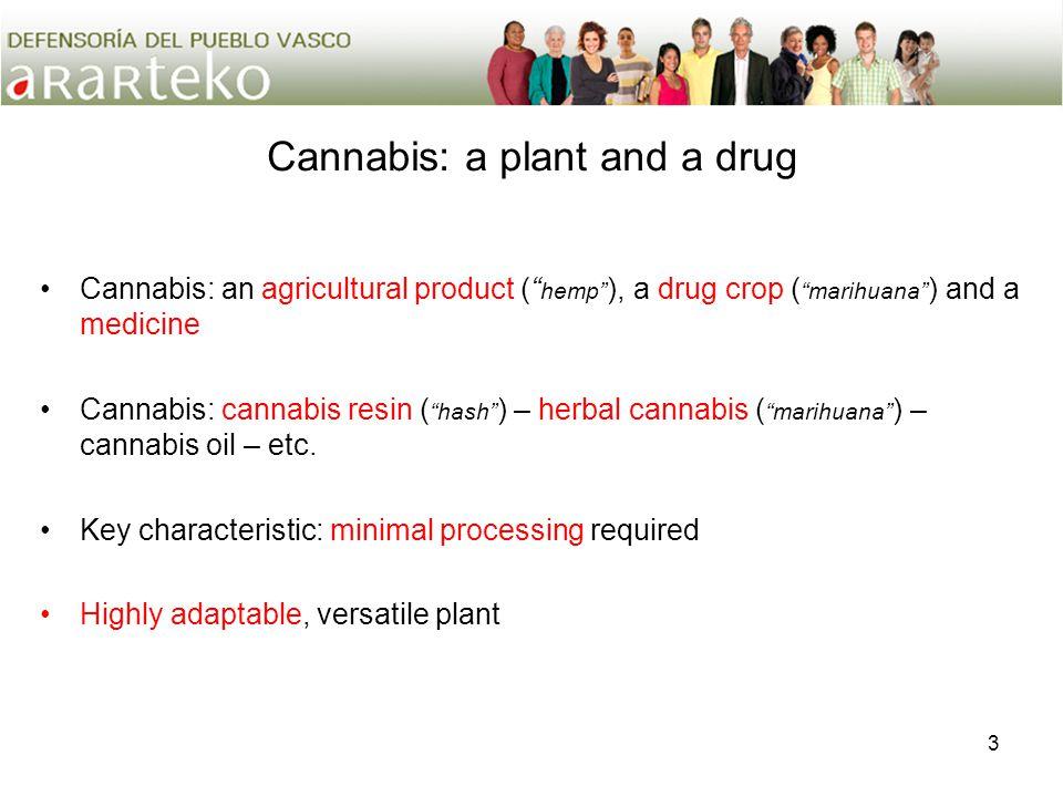 3 Cannabis: a plant and a drug Cannabis: an agricultural product ( hemp ), a drug crop ( marihuana ) and a medicine Cannabis: cannabis resin ( hash ) – herbal cannabis ( marihuana ) – cannabis oil – etc.