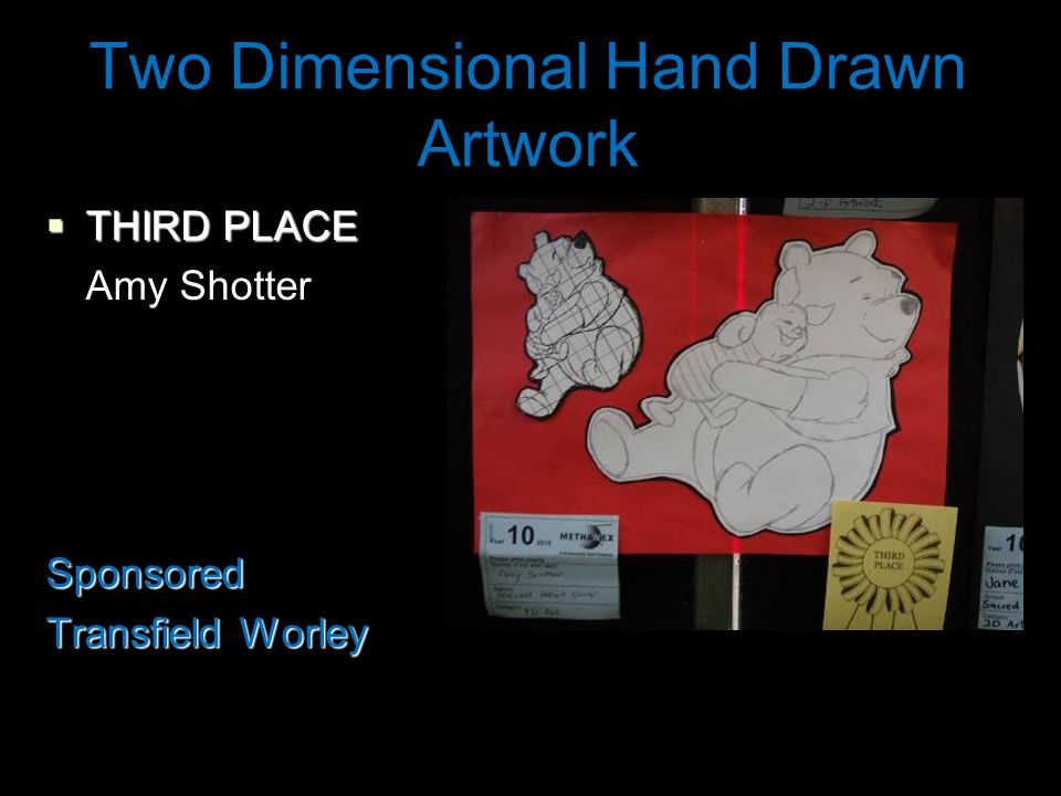 Two Dimensional Hand Drawn Artwork  THIRD PLACE Amy ShotterSponsored Transfield Worley