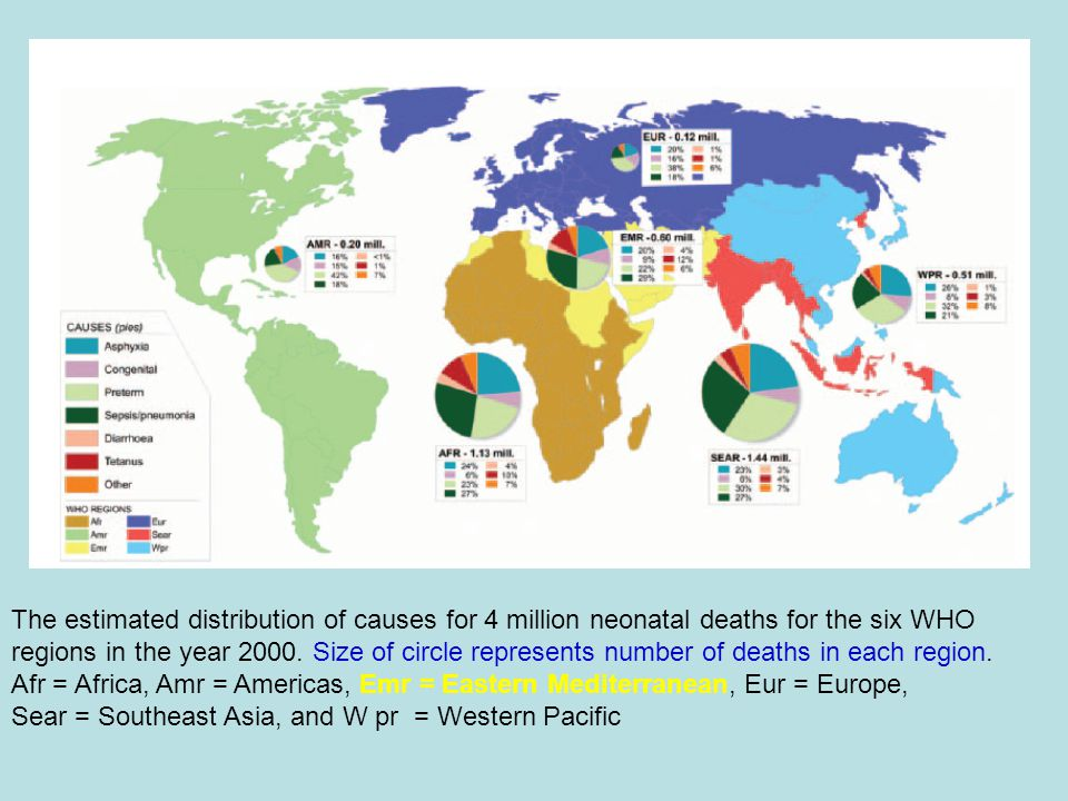 Prematurity and LBW Rate 1.Spain 1% 2.Finland, Sweeden, Ireland 4% 3.Jordan, Japan, Egypt 5% 4.Oman 6% 5.UK., USA,Chile 7% 6.Kuwait 7% 7.AFHSR 15.5% Unicef Report 2000