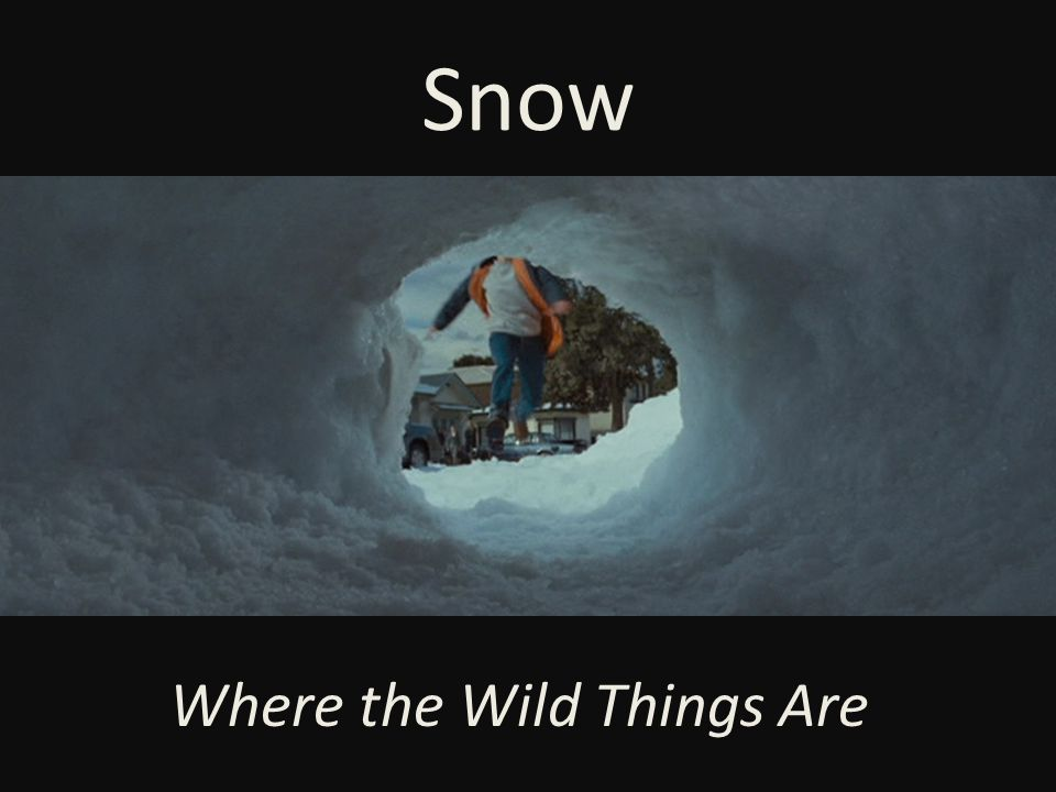 Snow Where the Wild Things Are