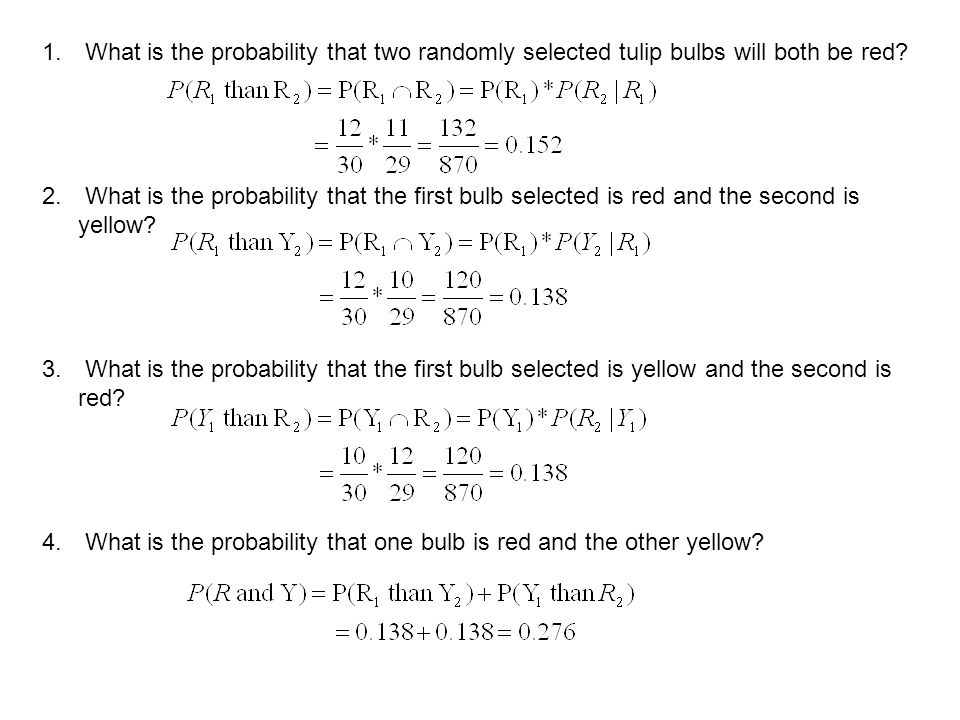 1. What is the probability that two randomly selected tulip bulbs will both be red? 2. What is the probability that the first bulb selected is red and