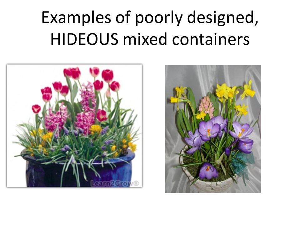 Examples of poorly designed, HIDEOUS mixed containers