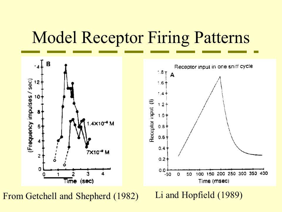 Model Receptor Firing Patterns From Getchell and Shepherd (1982) Li and Hopfield (1989)