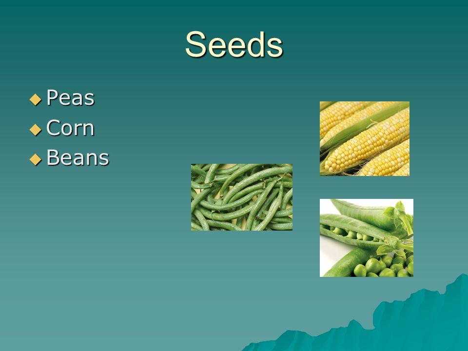 Seeds  Peas  Corn  Beans