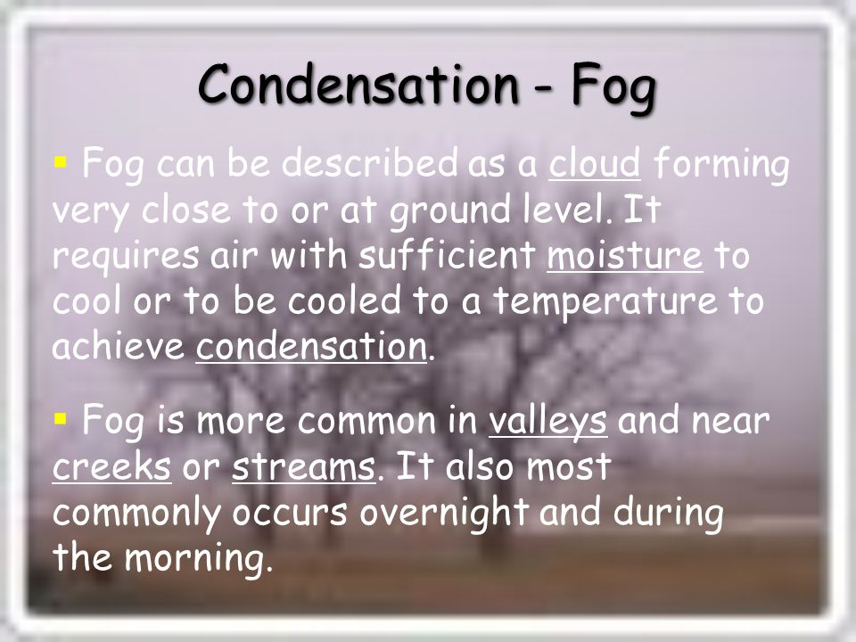 Condensation - Fog  Fog can be described as a cloud forming very close to or at ground level.