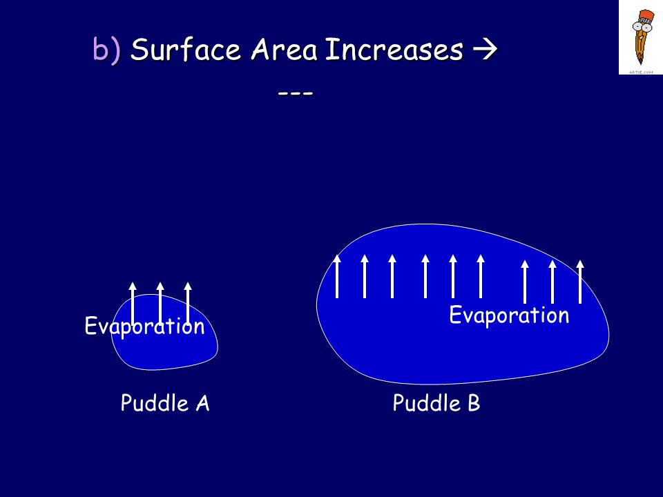 Factors Effecting Evaporation Rate a) Surface Temperature Increases  ---