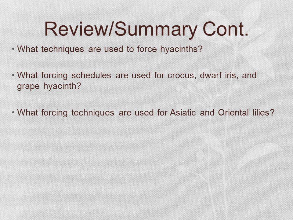 Review/Summary Cont.What techniques are used to force hyacinths.