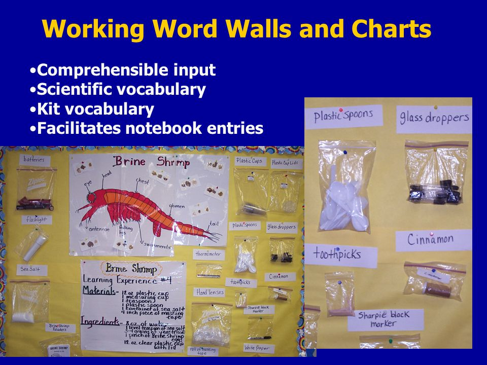 Working Word Walls and Charts Comprehensible input Scientific vocabulary Kit vocabulary Facilitates notebook entries