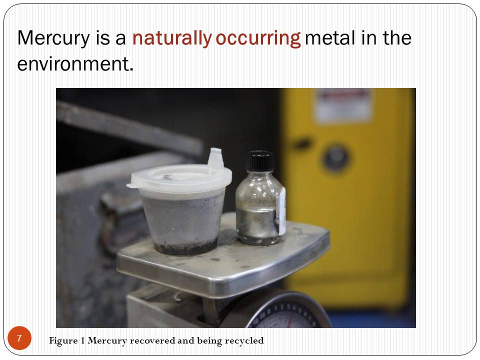 Mercury is a naturally occurring metal in the environment. 7 Figure 1 Mercury recovered and being recycled