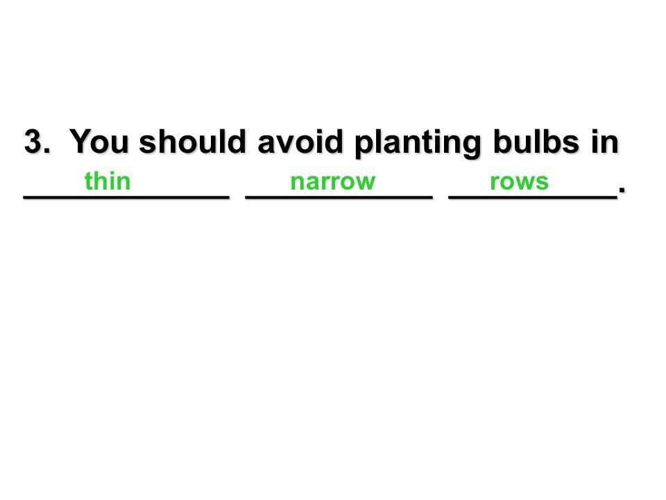 20. What is a good kind of fertilizer to use for bulbs?