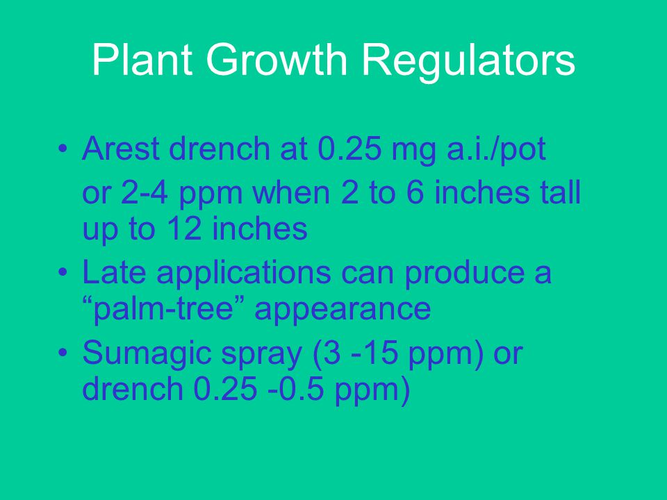 Plant Growth Regulators Arest drench at 0.25 mg a.i./pot or 2-4 ppm when 2 to 6 inches tall up to 12 inches Late applications can produce a palm-tree appearance Sumagic spray (3 -15 ppm) or drench 0.25 -0.5 ppm)