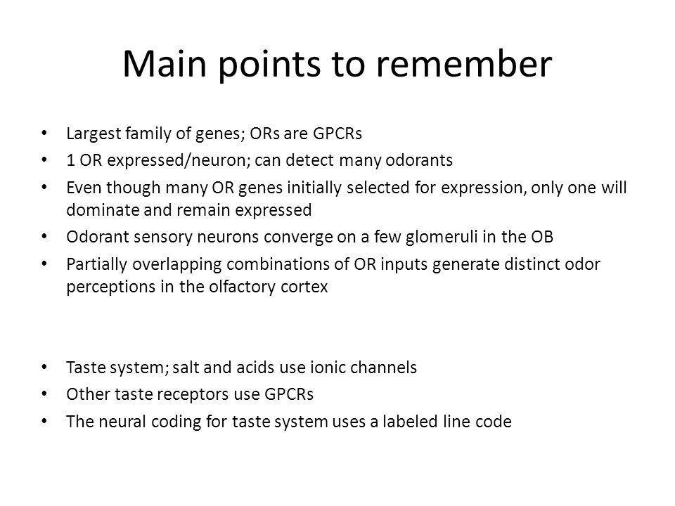 Main points to remember Largest family of genes; ORs are GPCRs 1 OR expressed/neuron; can detect many odorants Even though many OR genes initially selected for expression, only one will dominate and remain expressed Odorant sensory neurons converge on a few glomeruli in the OB Partially overlapping combinations of OR inputs generate distinct odor perceptions in the olfactory cortex Taste system; salt and acids use ionic channels Other taste receptors use GPCRs The neural coding for taste system uses a labeled line code