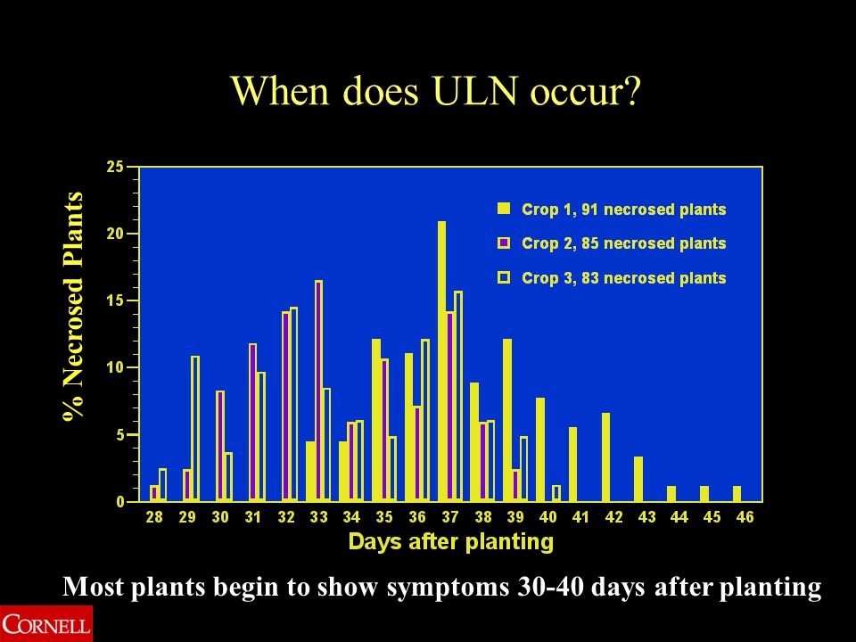 When does ULN occur? Most plants begin to show symptoms 30-40 days after planting % Necrosed Plants