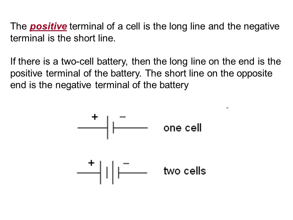 The positive terminal of a cell is the long line and the negative terminal is the short line. If there is a two-cell battery, then the long line on th