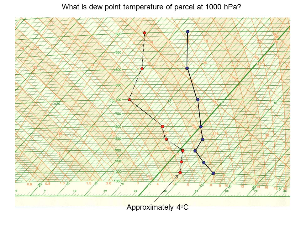 What is dew point temperature of parcel at 1000 hPa? Approximately 4 o C