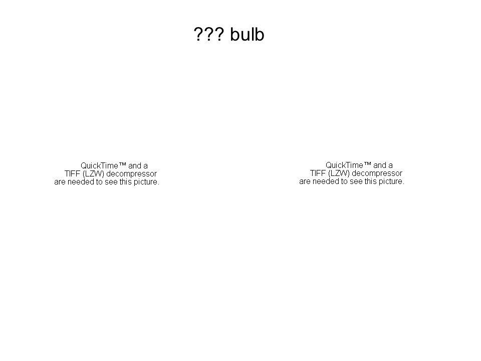 bulb 1/3 1/4 2/5
