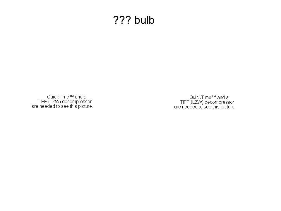 bulb 1/3 1/4 3/7 2/5
