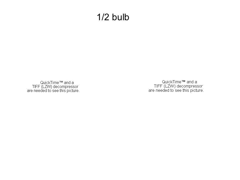 1/2 bulb 1/3 1/4 3/7 1/2 2/5