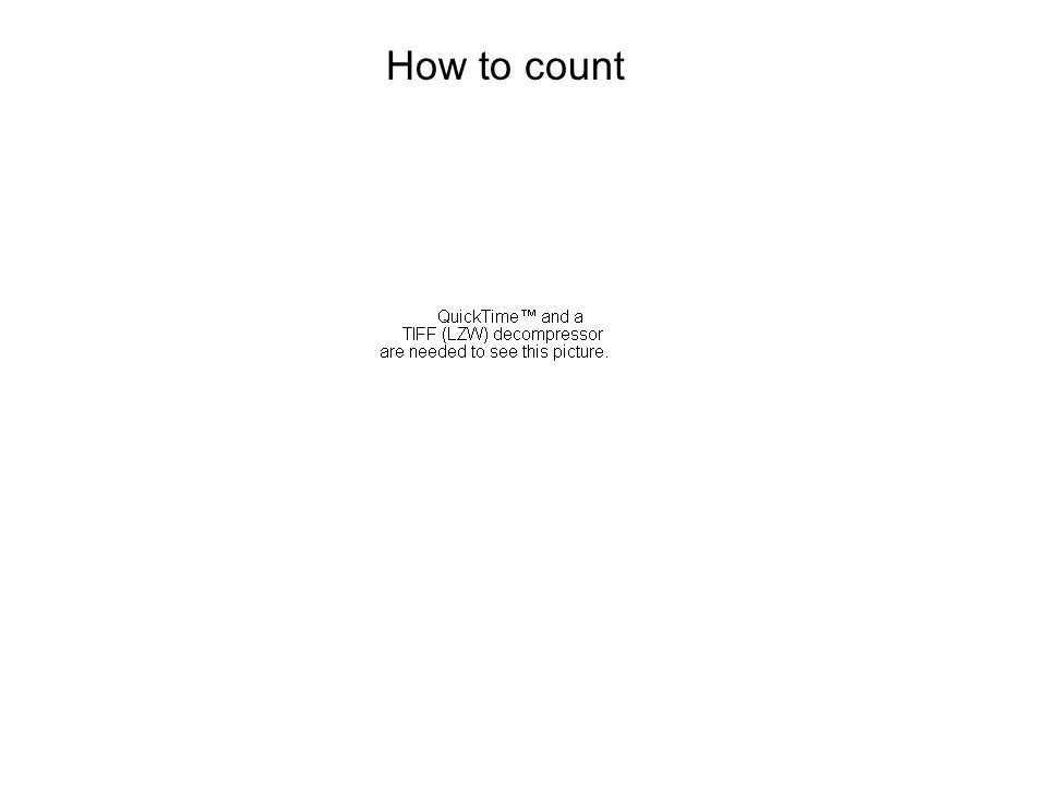 1/4 How to count