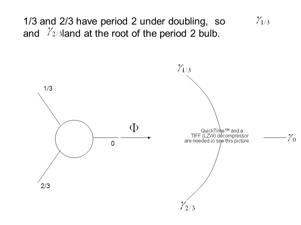 0 1/3 2/3 1/3 and 2/3 have period 2 under doubling, so and land at the root of the period 2 bulb. 2