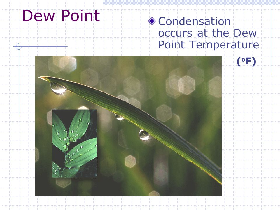 Dew Point Condensation occurs at the Dew Point Temperature ( o F)
