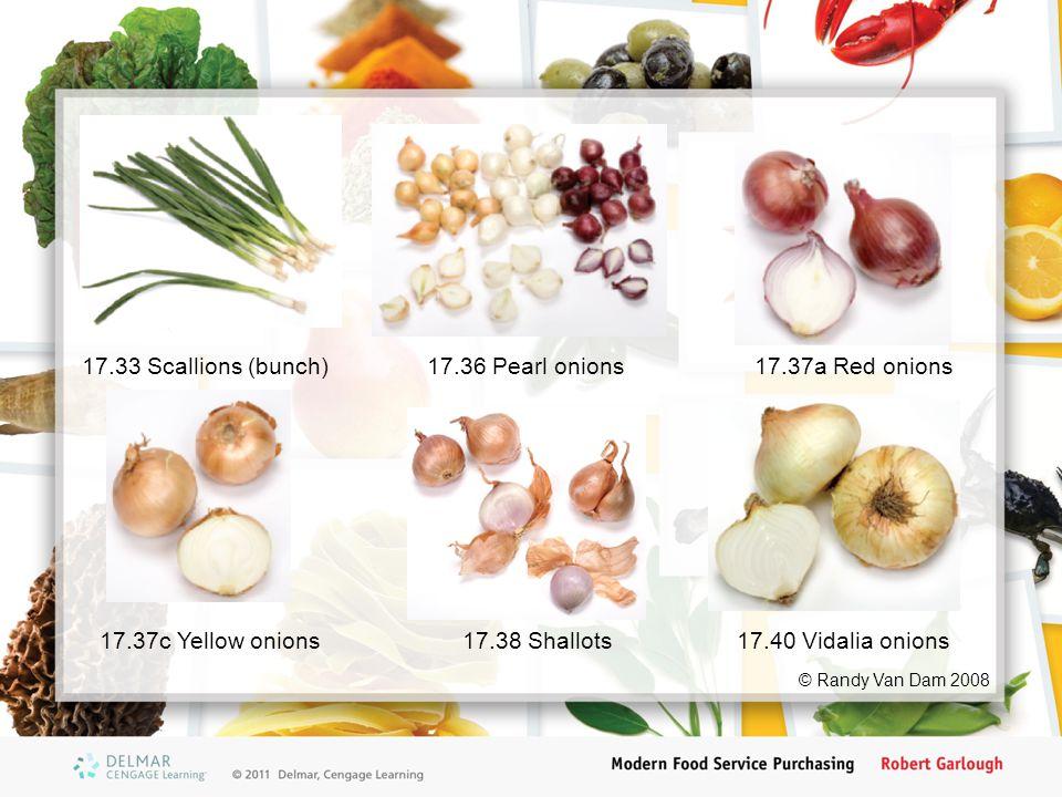 17.36 Pearl onions17.37a Red onions 17.37c Yellow onions17.38 Shallots17.40 Vidalia onions 17.33 Scallions (bunch) © Randy Van Dam 2008