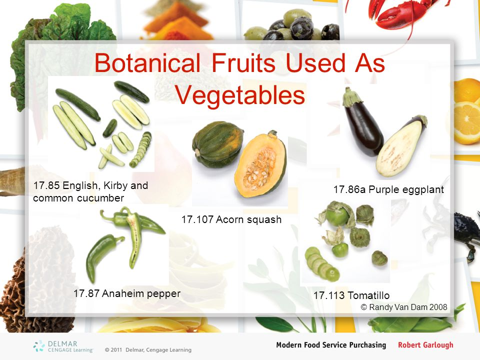 Botanical Fruits Used As Vegetables 17.85 English, Kirby and common cucumber 17.86a Purple eggplant 17.87 Anaheim pepper 17.107 Acorn squash 17.113 Tomatillo © Randy Van Dam 2008