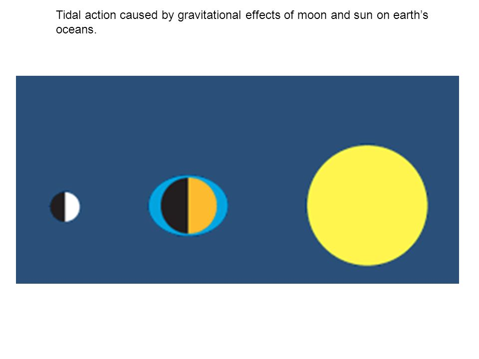 Tidal action caused by gravitational effects of moon and sun on earth's oceans.