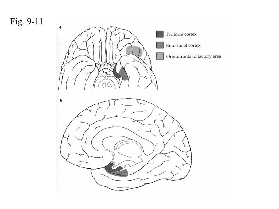 Fig. 9-11