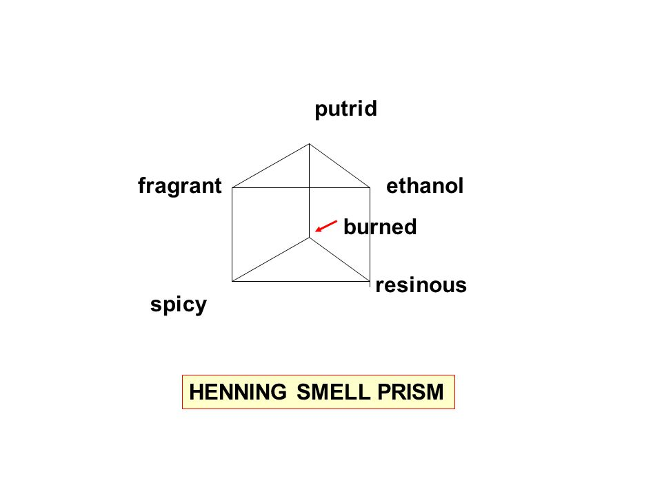 putrid ethanol resinous spicy fragrant burned HENNING SMELL PRISM