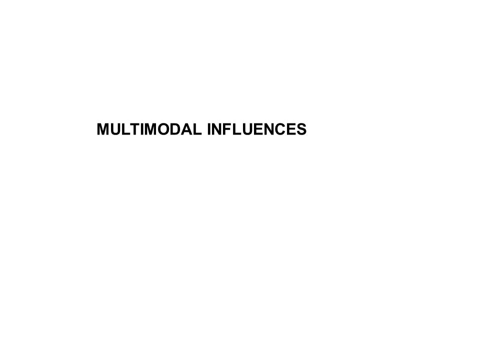 MULTIMODAL INFLUENCES