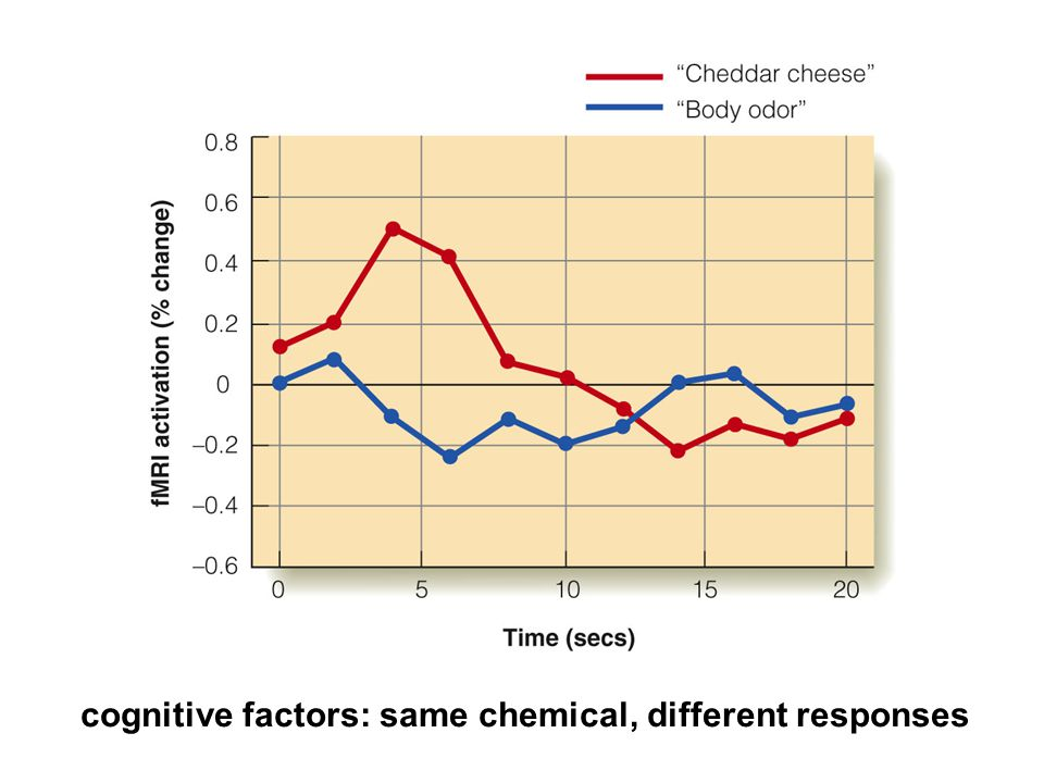 cognitive factors: same chemical, different responses