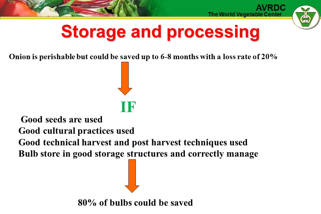 The World Vegetable Center AVRDC Storage and processing Onion is perishable but could be saved up to 6-8 months with a loss rate of 20% IF Good seeds are used Good cultural practices used Good technical harvest and post harvest techniques used Bulb store in good storage structures and correctly manage 80% of bulbs could be saved