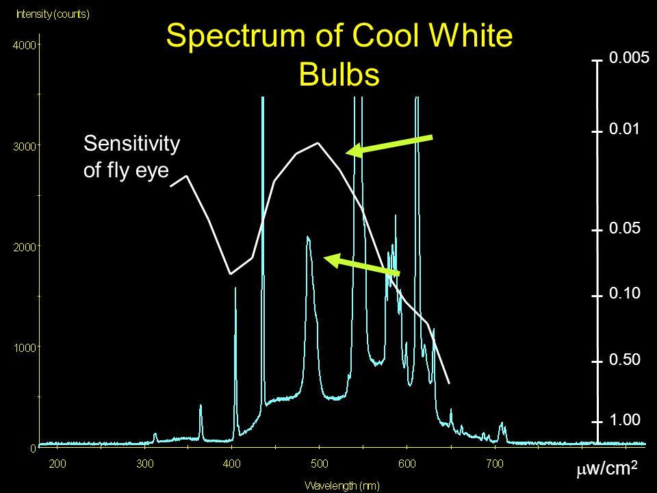 0.005 0.05 0.01 0.10 1.00 0.50  w/cm 2 Spectrum of Cool White Bulbs Sensitivity of fly eye