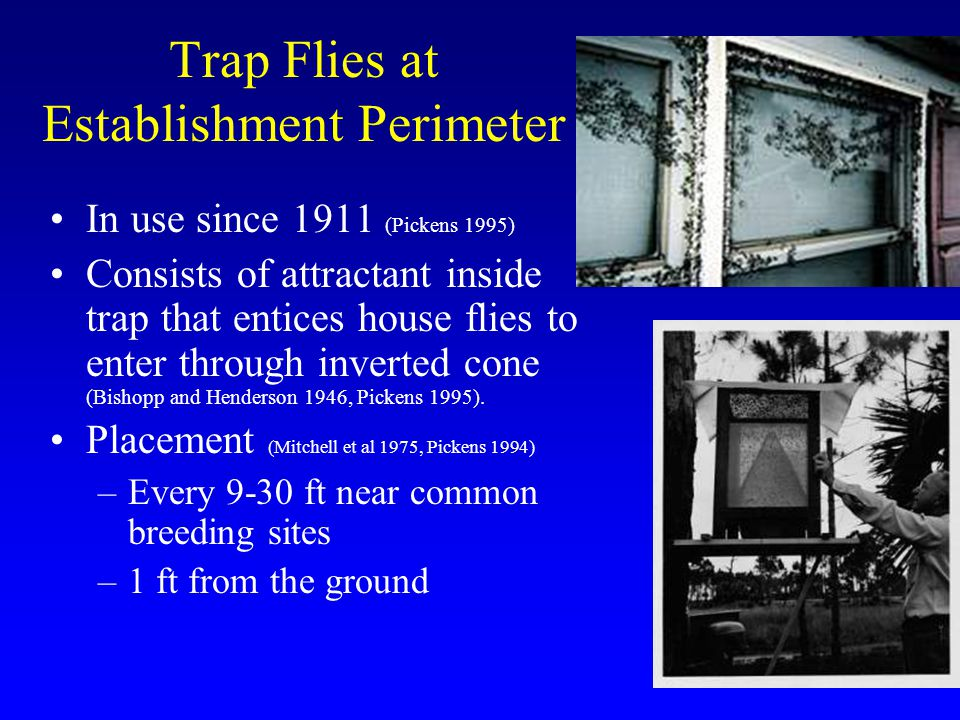 Trap Flies at Establishment Perimeter In use since 1911 (Pickens 1995) Consists of attractant inside trap that entices house flies to enter through in
