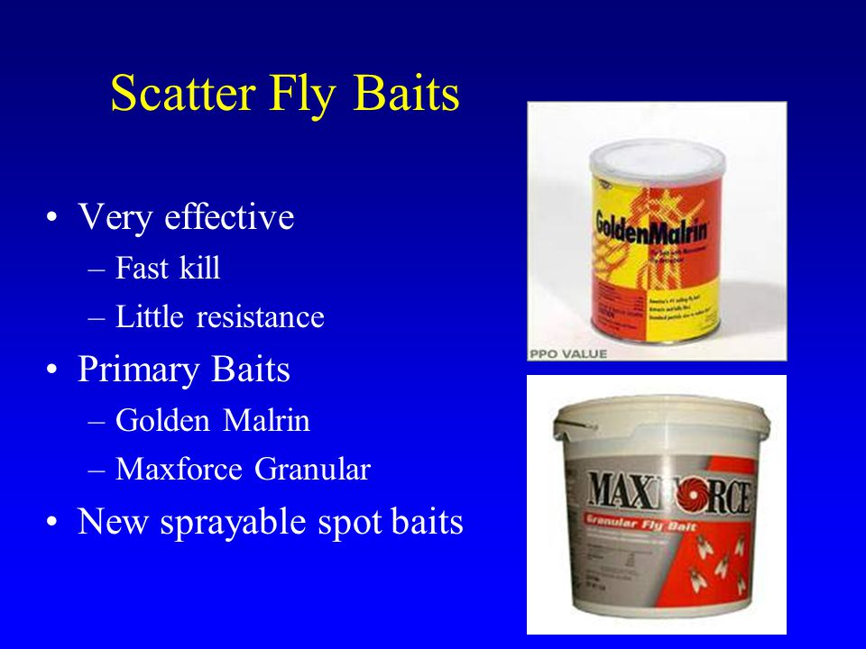 Scatter Fly Baits Very effective –Fast kill –Little resistance Primary Baits –Golden Malrin –Maxforce Granular New sprayable spot baits