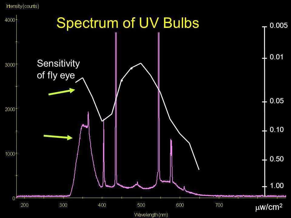 ............. 0.005 0.05 0.01 0.10 1.00 0.50 Sensitivity of fly eye  w/cm 2 Spectrum of UV Bulbs