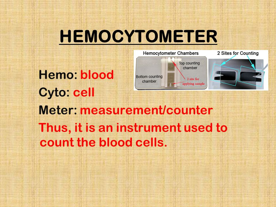 HEMOCYTOMETER Hemo: blood Cyto: cell Meter: measurement/counter Thus, it is an instrument used to count the blood cells.