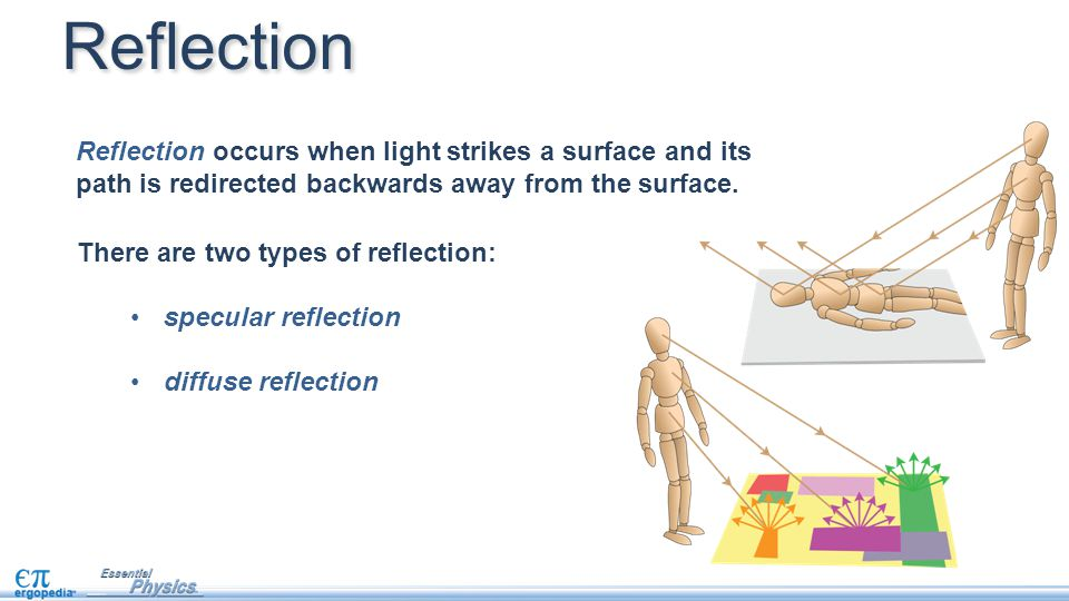 Reflection occurs when light strikes a surface and its path is redirected backwards away from the surface. There are two types of reflection: specular
