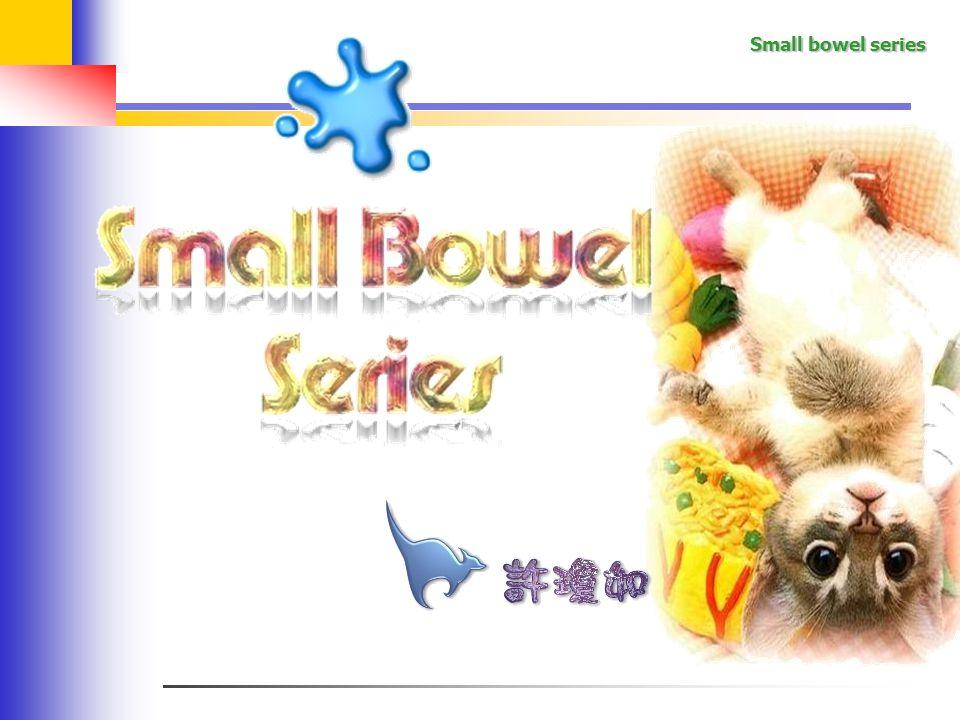 Small bowel series