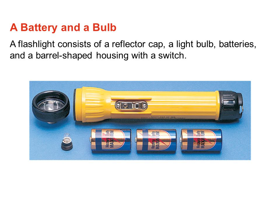 A flashlight consists of a reflector cap, a light bulb, batteries, and a barrel-shaped housing with a switch. A Battery and a Bulb