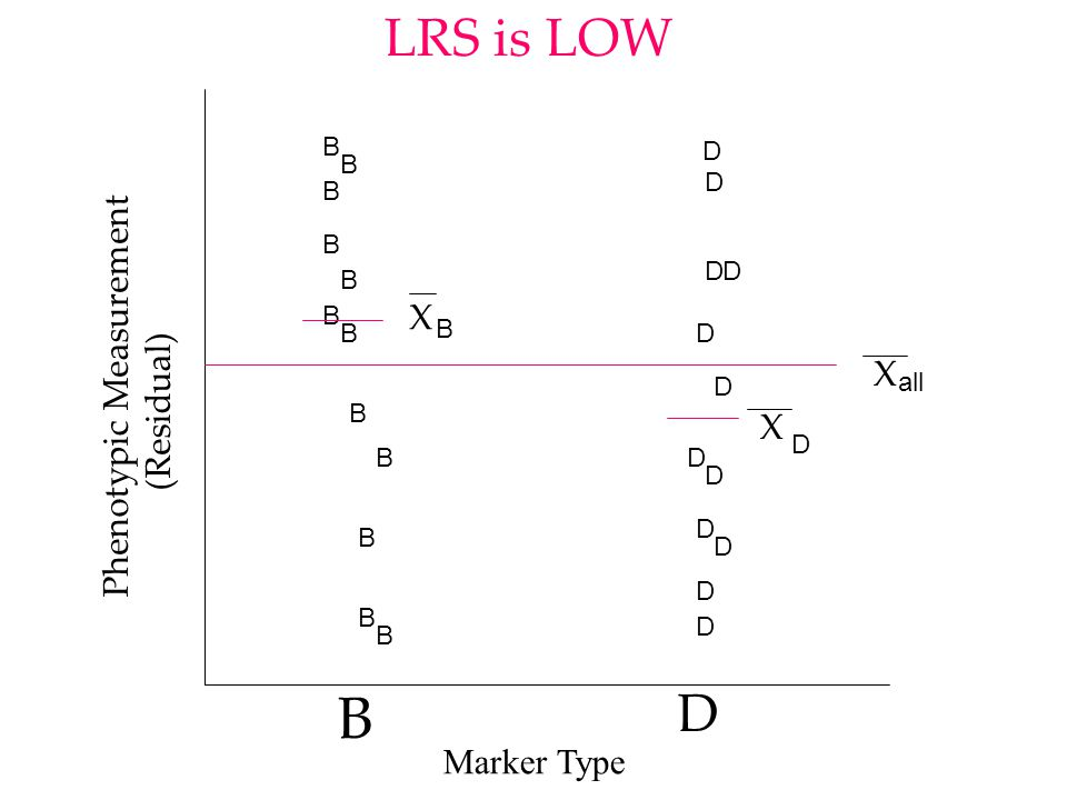 B D B B B B BB BBBB BB D D D D D D D D D D D D Phenotypic Measurement (Residual) LRS is High X all X D X B Marker Type