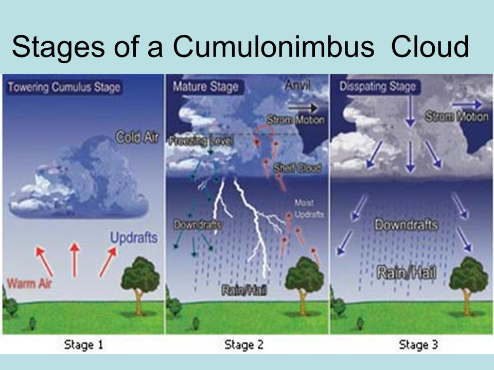 Stages of a Cumulonimbus Cloud